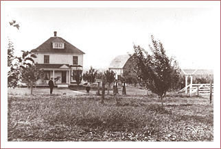 Johnson Orchards, circa 1907